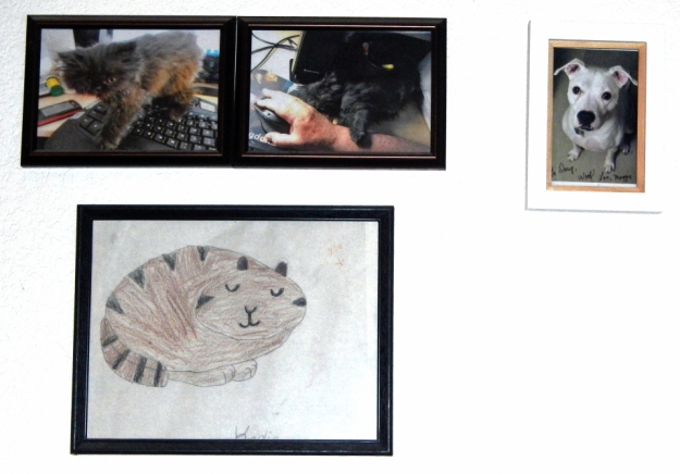Right next to Andy and Dougy as kittens, you'll find a signed photo from my dog buddy Maggie! The drawn cat was a gift from Kaelia, now 19 years old (!), who was a little kid when she drew that kitty and gave it to me to cheer me up when I was recovering from my initial flare of Wegener's granulomatosis. I